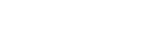Trollfjord Strøm